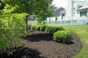 Mulch Bed